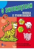 Nauka i zabawa. O zwierzętach. Nauka z tygryskiem.