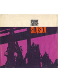 Barwy i rytmy Śląska