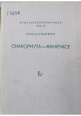 Charophyta Ramienice tom 13