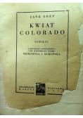 Kwiat Colorado1936 r