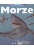 Morze encyklopedia Laroussea dla dzieci w wieku 6 - 9 lat