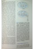 Endokrynologia ogólna i kliniczna Greenspana 2 tomy