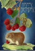 Karnet B6 z kopertą Urodziny Myszka