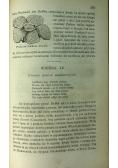 Świat roślinny 2 tomy 1867 r