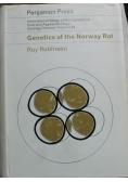 Genetics of the Norway Rat
