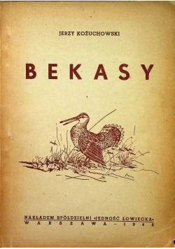 Bekasy szkic ornitologiczno myśliwski 1948r