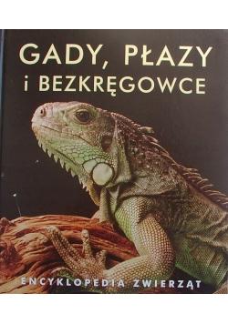 Encyklopedia zwierząt Gady płazy i bezkręgowce