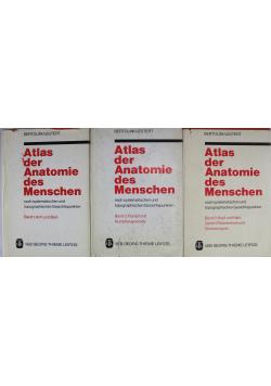 Atlas der Anatomie des Menschen 3 tomy