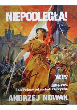 Niepodległa 1864 1924 jak Polacy odzyskali Ojczyznę