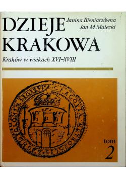 Dzieje Krakowa Kraków w wiekach XVI XVIII Tom 2