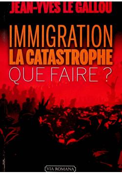 Immigration la catastrophe que faire
