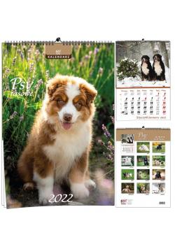 Kalendarz 2022 B3 7 plansz Psy