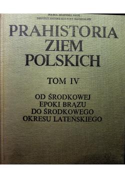 Prahistoria ziem polskim tom IV