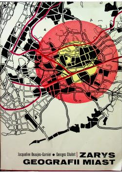 Zarys geografii miast