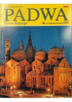 Padwa: Miasto świętego