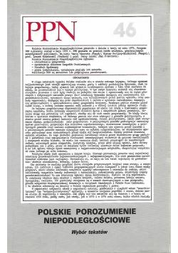Polskie porozumienie niepodległości