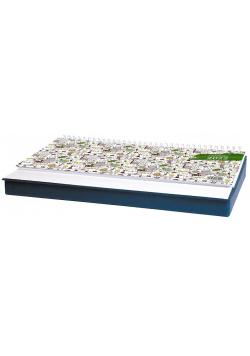 Kalendarz 2022 biurkowy z piórnikiem