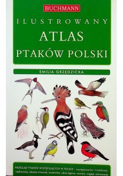 Ilustrowany atlas ptaków polski