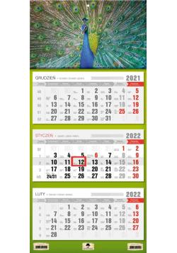 Kalendarz 2022 trójdzielny Paw