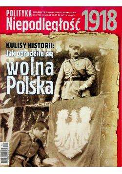 Polityka Niepodległość 1918