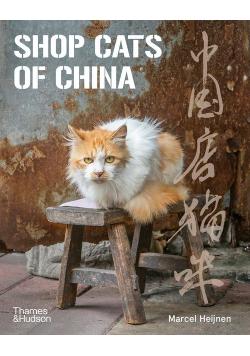 Shop Cats of China