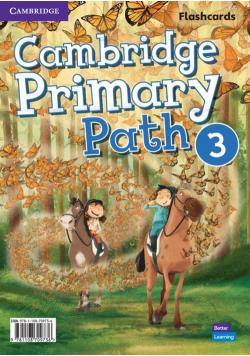 Cambridge Primary Path Level 3 Flashcards