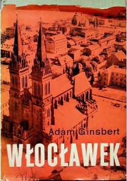 Wrocławek