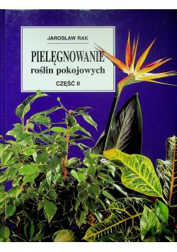 Pielęgnowanie roślin pokojowych Część II