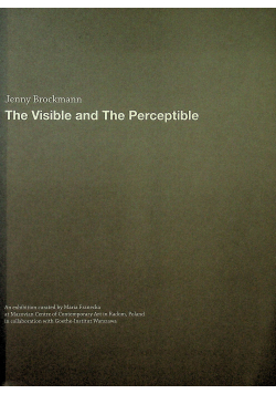 The Visible and The Perceptible