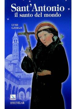 Sant Antonio il santo del mondo