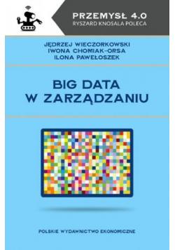 Big data w zarządzaniu