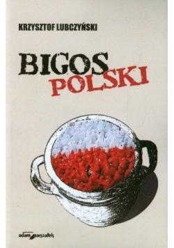 Bigos polski. Rozmowy i szkice