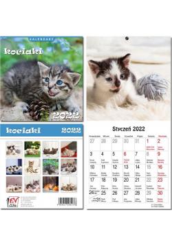 Kalendarz 2022 13 plansz Kociaki