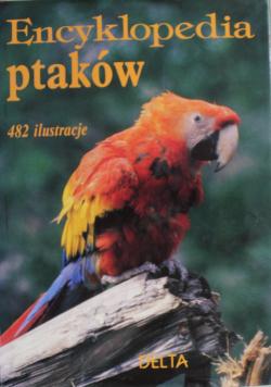Encyklopedia ptaków  482 ilustracje