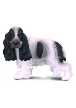 Pies cocer spaniel angielski