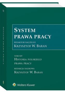 System prawa pracy T.14
