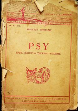 Psy 1928 r.