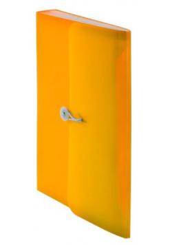 Teczka harmonijkowa z gumką A4 pom. BT622-P