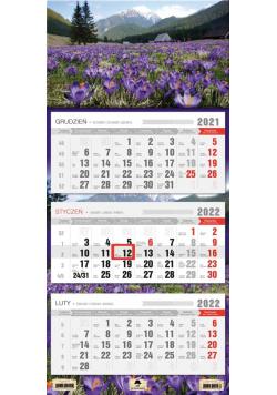 Kalendarz 2022 trójdzielny Krokusy