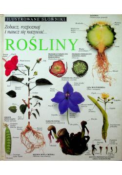 Ilustrowane Słowniki Rośliny
