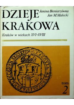 Dzieje Krakowa tom 2