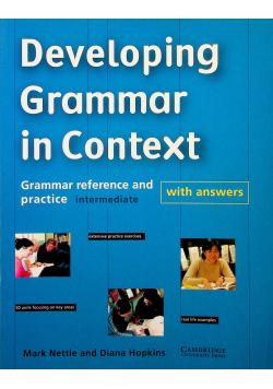 Developing Grammar in Context