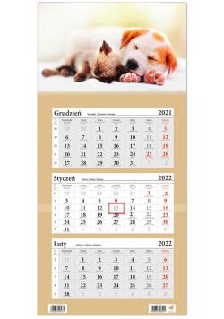 Kalendarz ścienny 2022 trójdzielny Pies i Kot