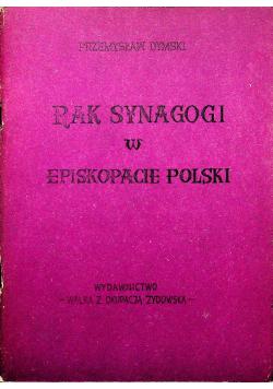 Rak Synagogi w Episkopacie Polski zeszyt 3