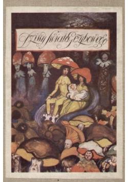 Dziwy świata grzybowego 1928 r