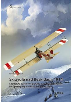 Skrzydła nad Beskidami 1914