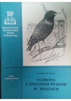 Ochrona i znaczenie ptaków w miastach