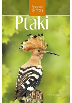 Ptaki w Polsce. Spotkania z przyrodą