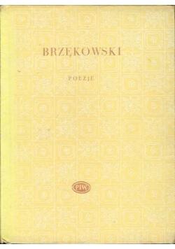 Brzękowski Poezje