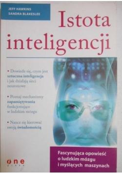 Istota inteligencji